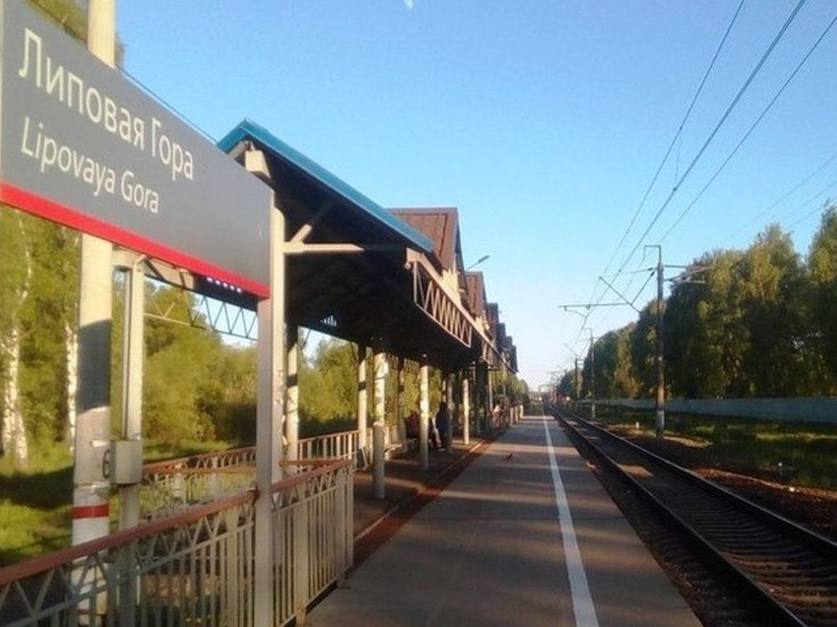Поезд отрезал голову 24-летнему жителю Ярославля
