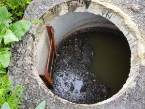 Под Воронежем семья погибла, провалившись в выгребную яму