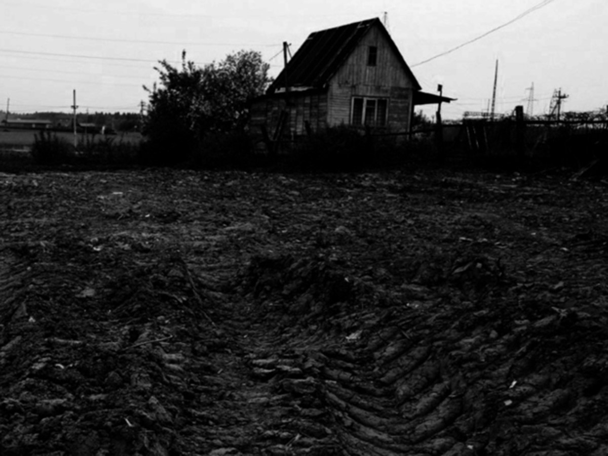 В Новой Москве убийство выселение