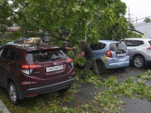 Ураган во Владивостоке