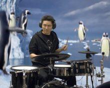 Блогер сыграл на барабанах для виртуальных пингвинов