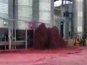 Авария на испанском винзаводе