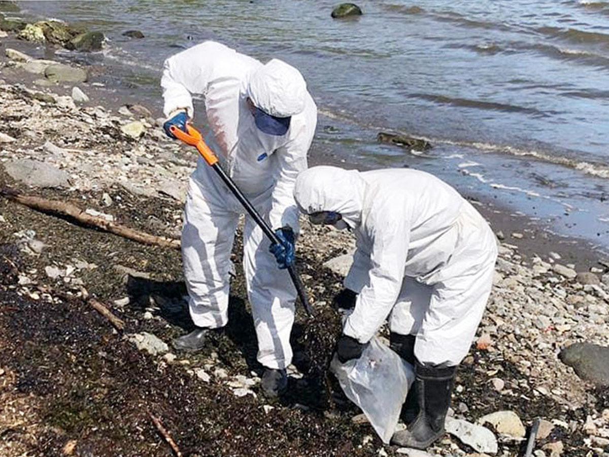 Дудь разлив нефти на Камчатке