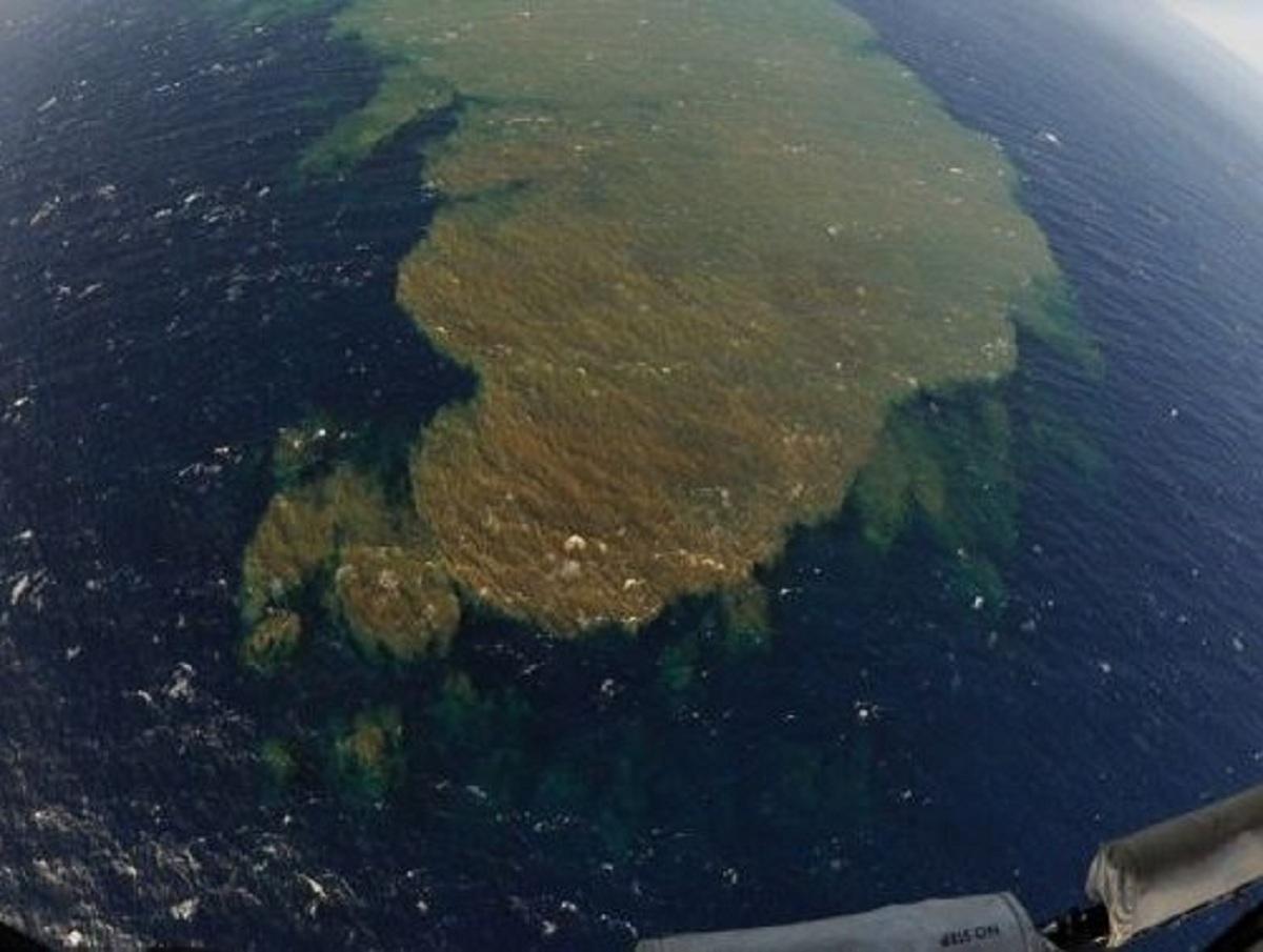 Видео Дудя с пятном у Камчатки сняли не в Авачинском заливе