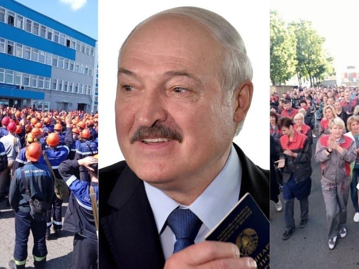 Тихановская забастовка Лукашенко