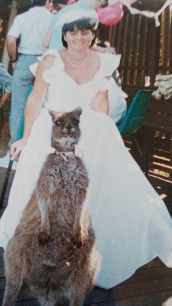 Кенгуру на свадьбе