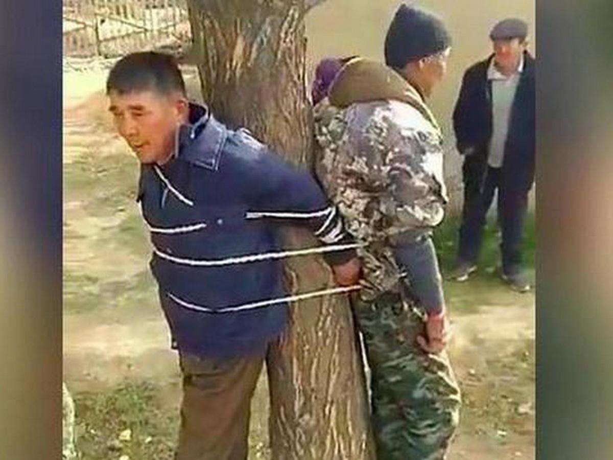 В Киргизии привязали к дереву участкового и чиновника
