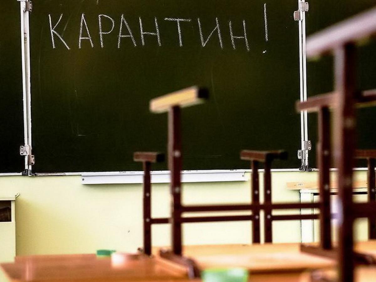 В Москве COVID-19 выявляют у 70 учителей в сутки