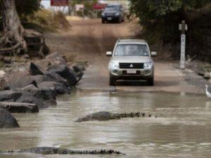 Семья пересекла вброд реку, кишащую крокодилами