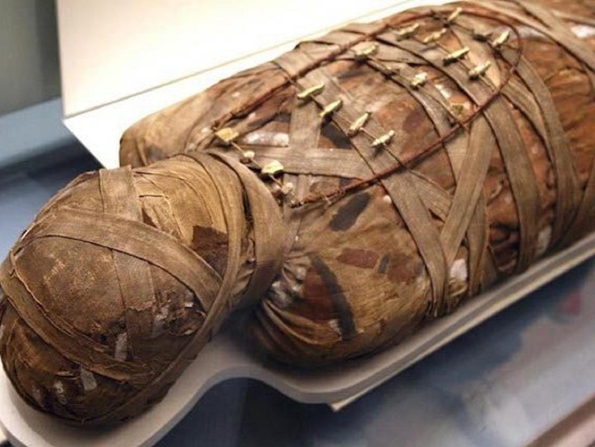 Загадочный артефакт внутри египетской мумии удивил ученых