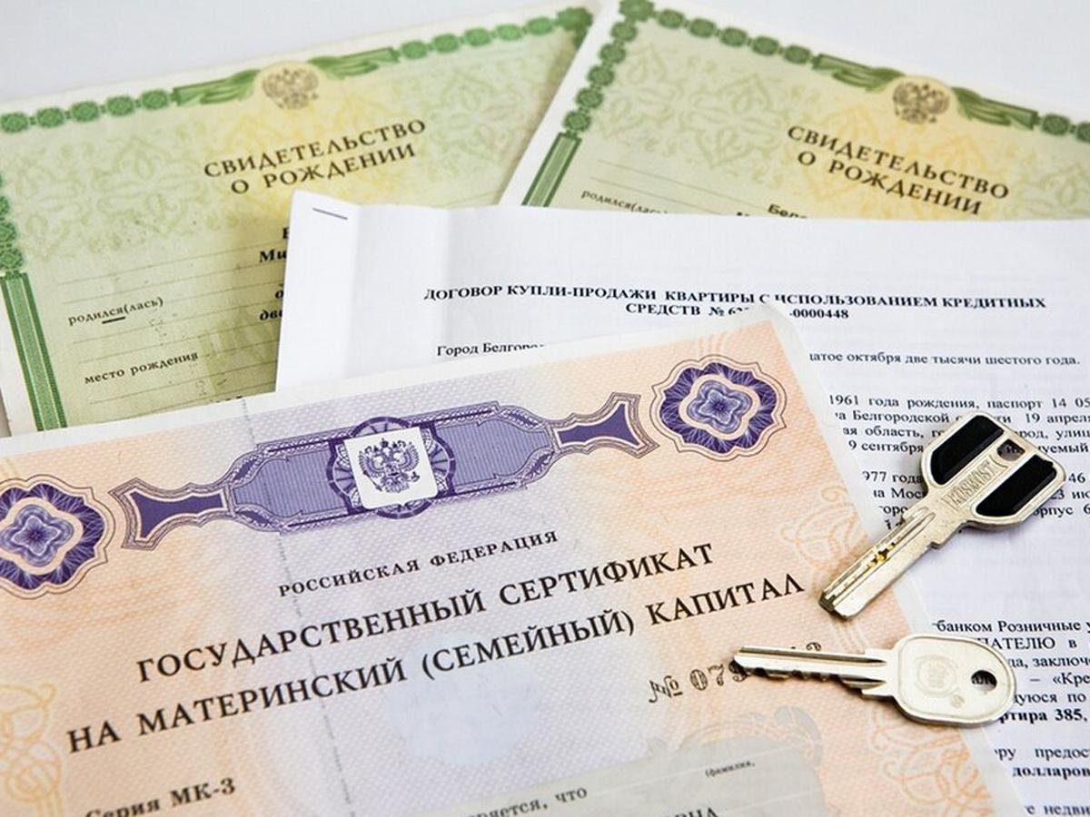 От трех категорий россиян требуют вернуть маткапитал