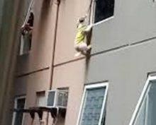 В Сети обсуждают спасение щенка, повисшего на высоте 3 этажа