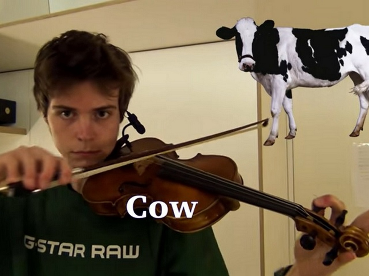 Музыкант с помощью скрипки изобразил звуки животных