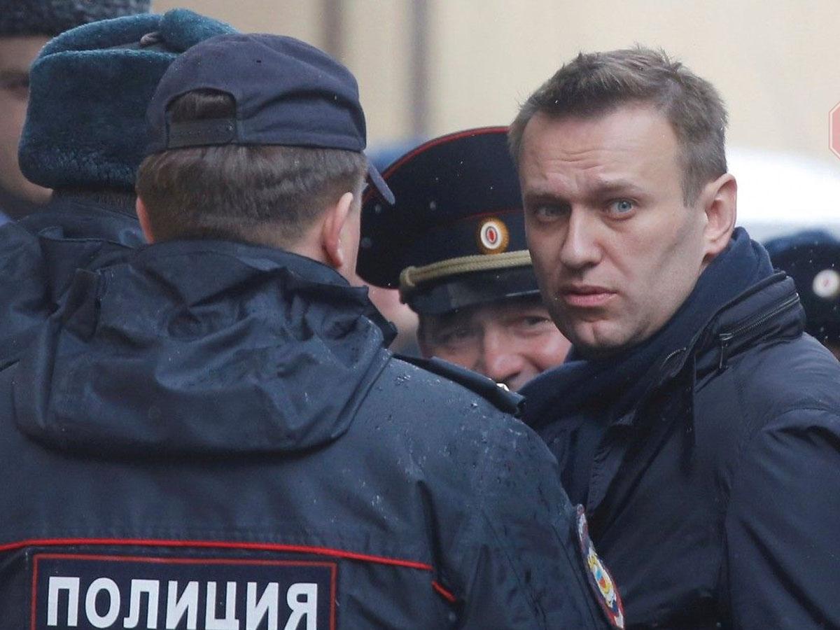 56 стран о расследовании отравления Навального