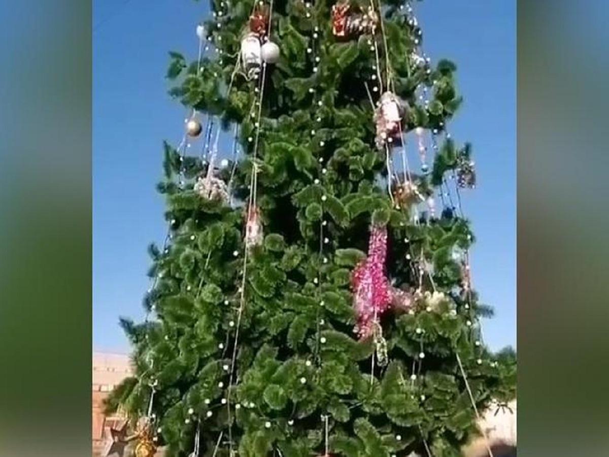 «Бюджетно»: новогоднюю елку в Пензенской области украсили мусором
