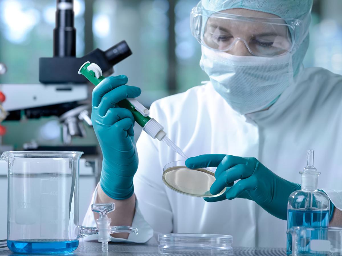 Ученые изучают коронавирус