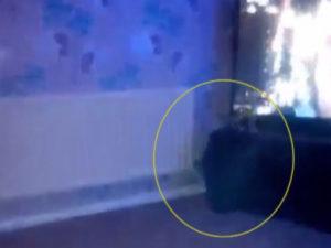 Британка сделала фото домогавшегося ее призрака