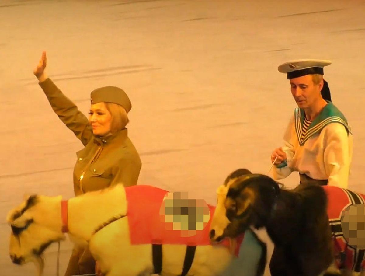 Козлы в накидках с нацистской символикой в цирке Ижевска вызвали скандал