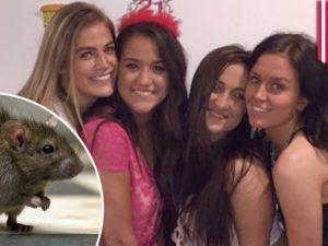 Девушки, изгоняющие крысу из дома, набирают популярность в Сети
