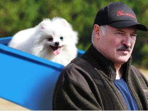 Политолог объяснил появления Лукашенко с собакой