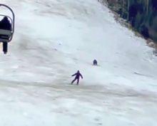 Медведь рванувший за лыжником, попал на видео и собрал тысячи просмотров