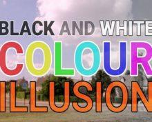 В интернете обсуждают оптическую иллюзию: черно-белое фото на глазах превращается в цветное