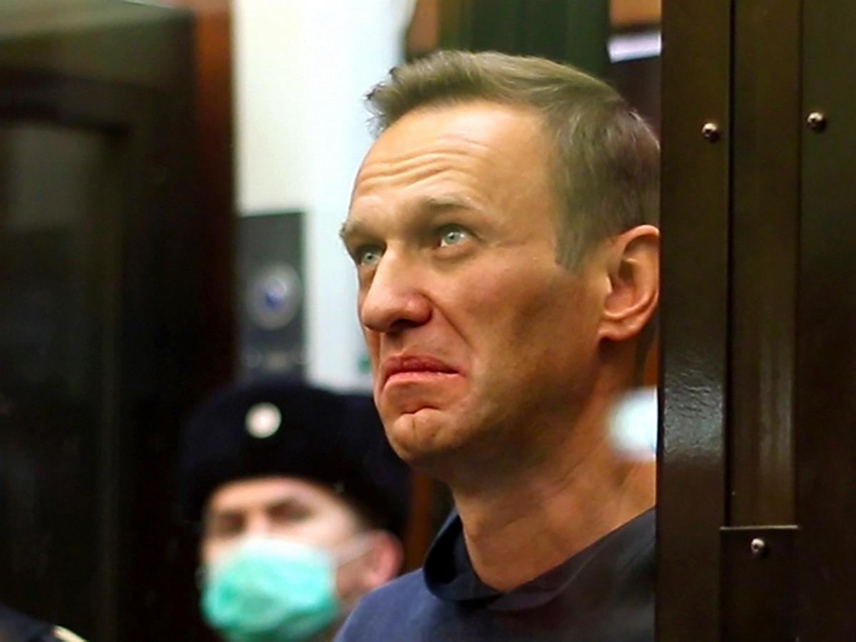 """""""Тут явно какой-то подвох"""": Навального ввели в замешательство сотни фото котов в письмах с поддержкой"""