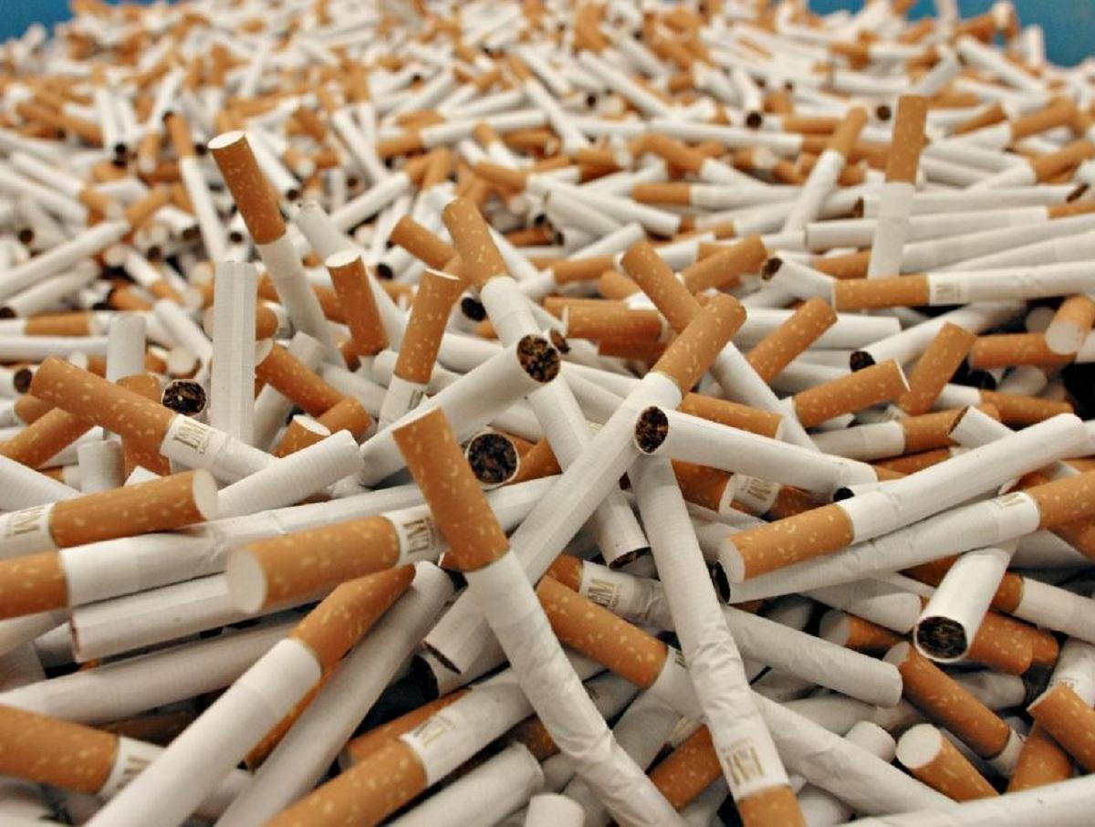 СМИ: Белоруссия контрабандой поставляет в Россию сигареты на миллиарды рублей