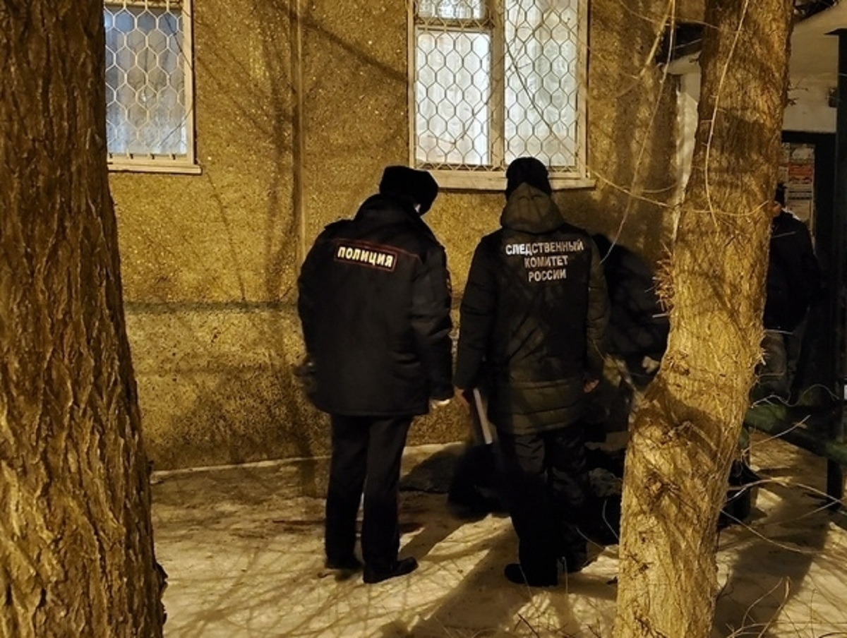 Под Оренбургом бабушка зарезала 2-летнюю внучку, оставленную у нее на ночь