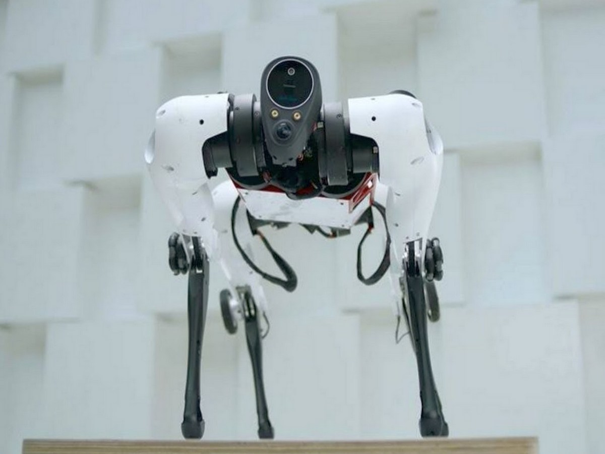 Гибридный робот на колесах собрал около 5 тысяч просмотров