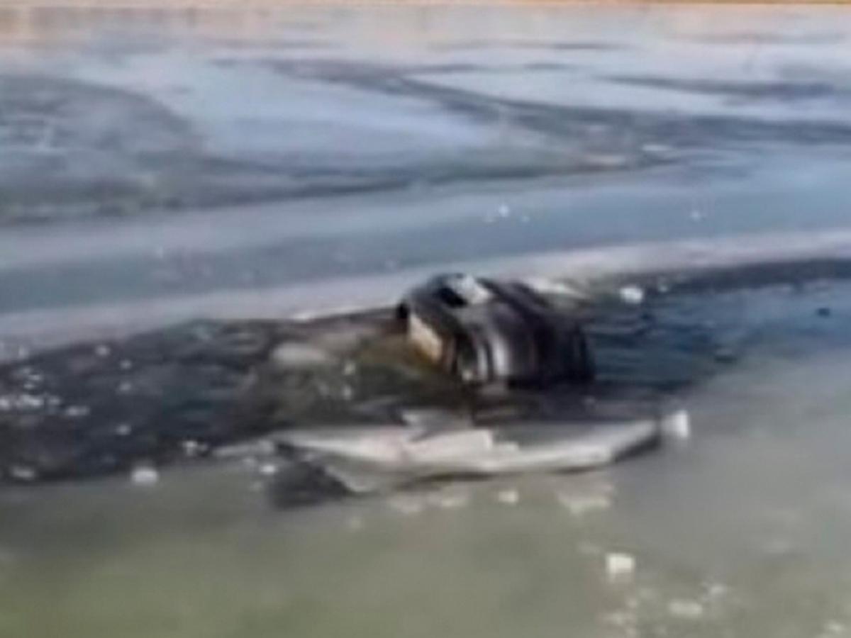 В Приморье на рыбалке погибла семья