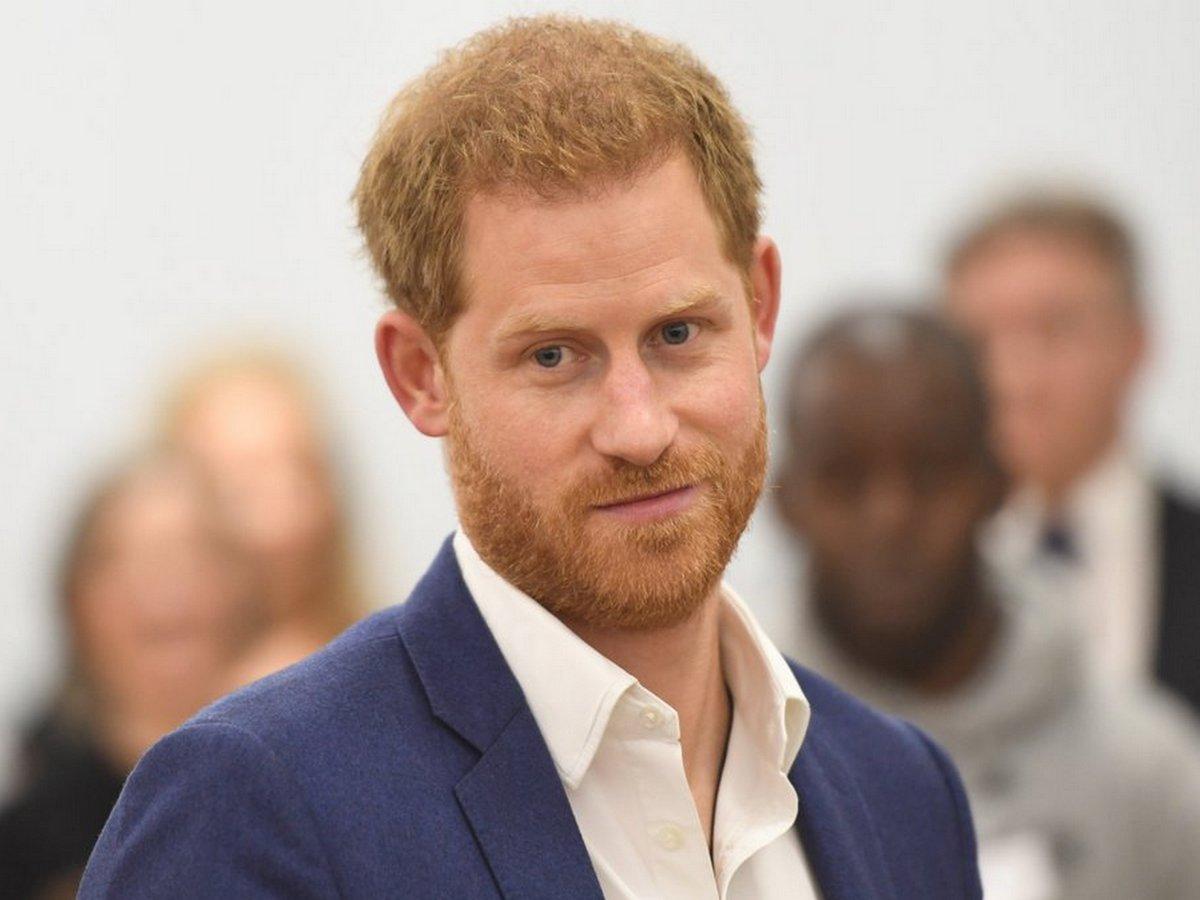 Портрет принца Гарри, написанный свиньей, продали за 2 350 фунтов стерлингов