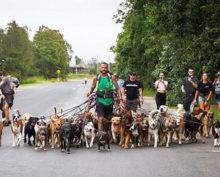 Мужчина, мечтающий о рекордах, отправился на прогулку с 55 собаками