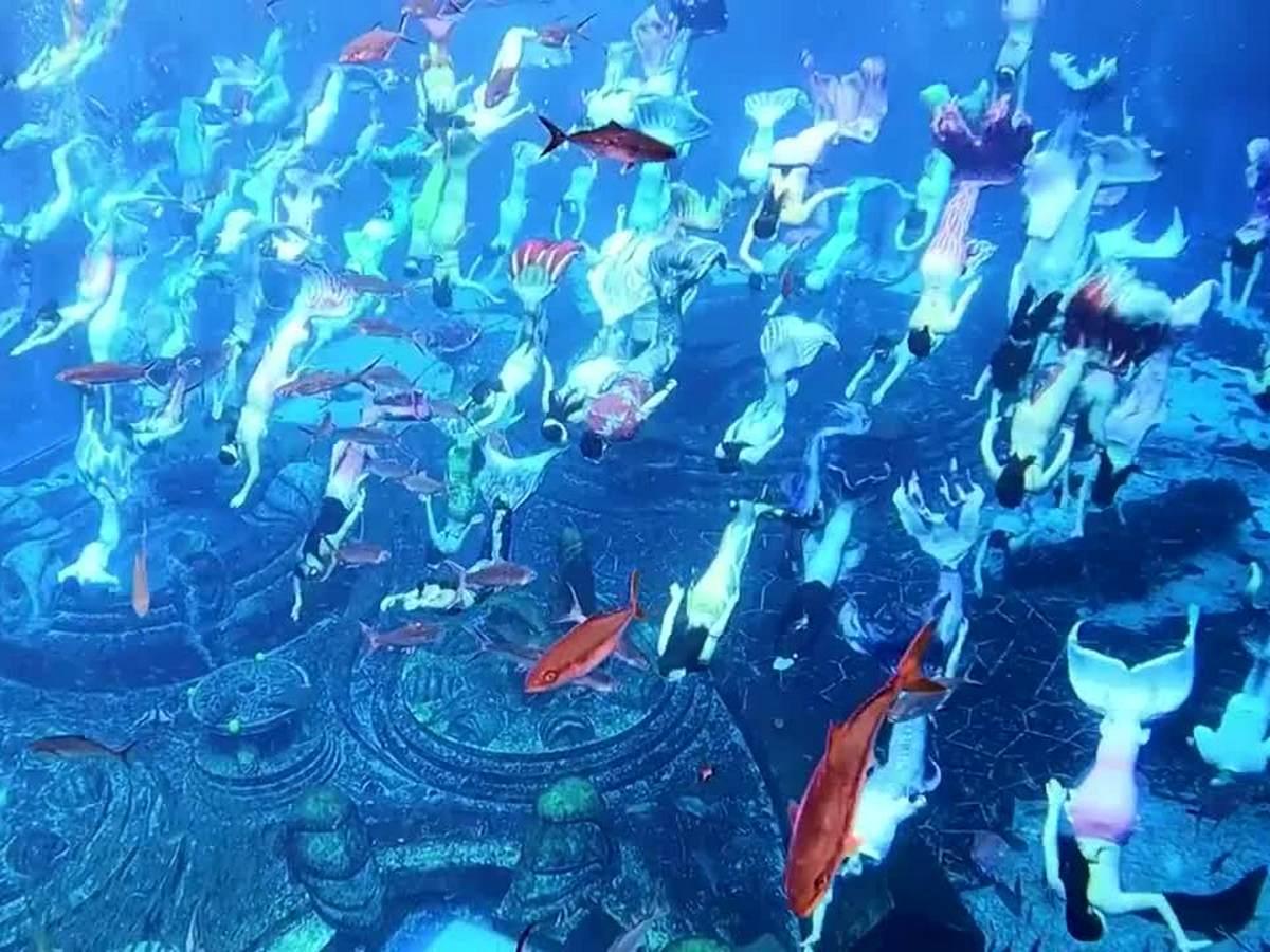 В китайском шоу приняли участие 110 русалок