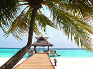 Мальдивы и Сейшелы COVID-19