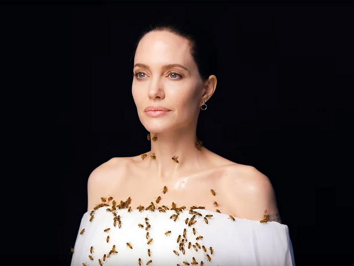 Анджелину Джоли облепили пчелы на сьемках социального ролика