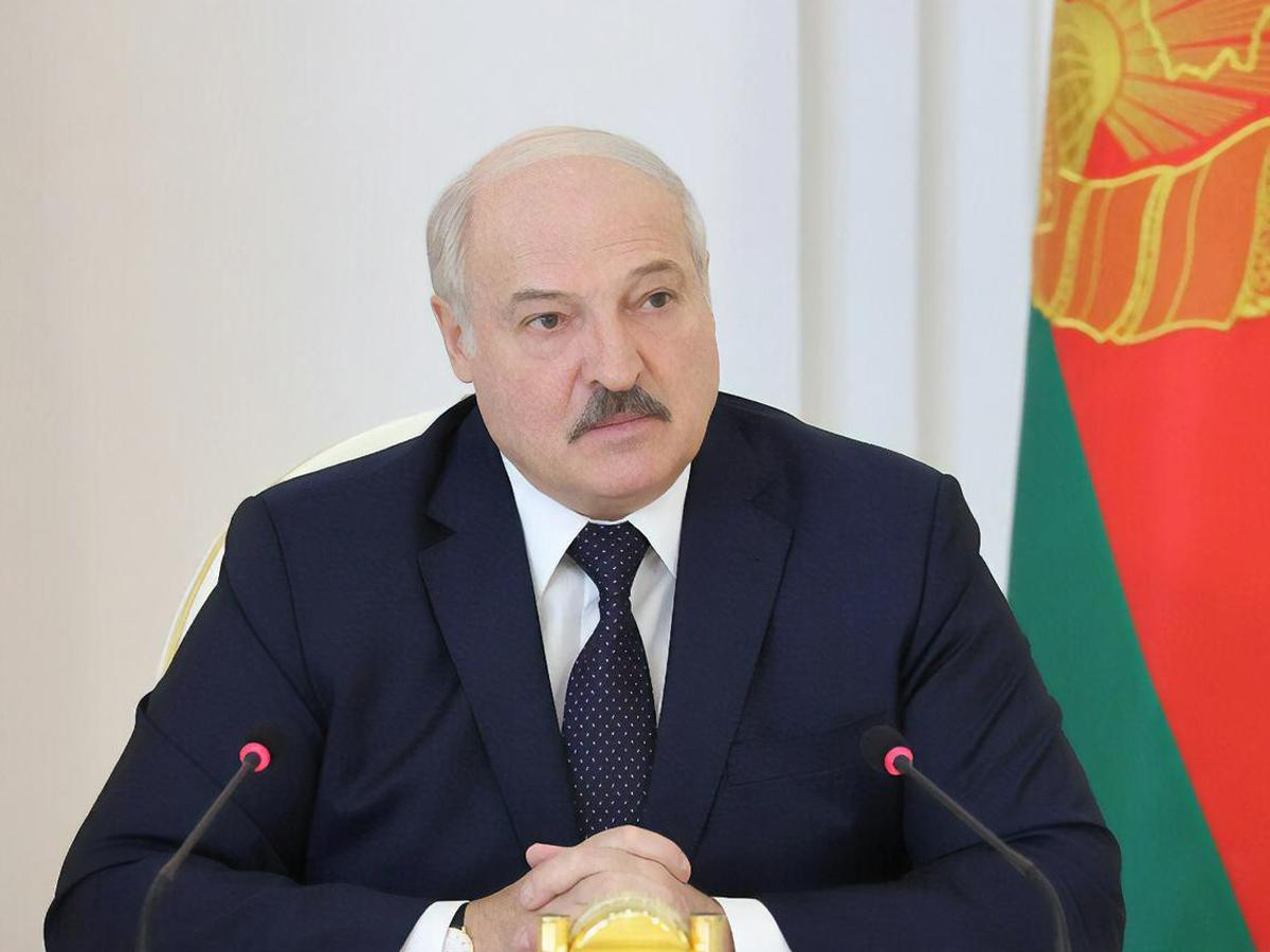 Лукашенко ЛНР допрос Протасевича