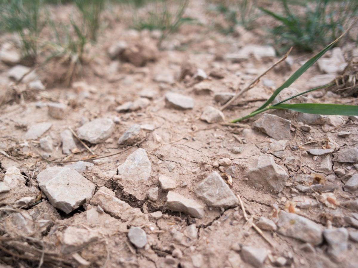 Синоптики засуха в июле