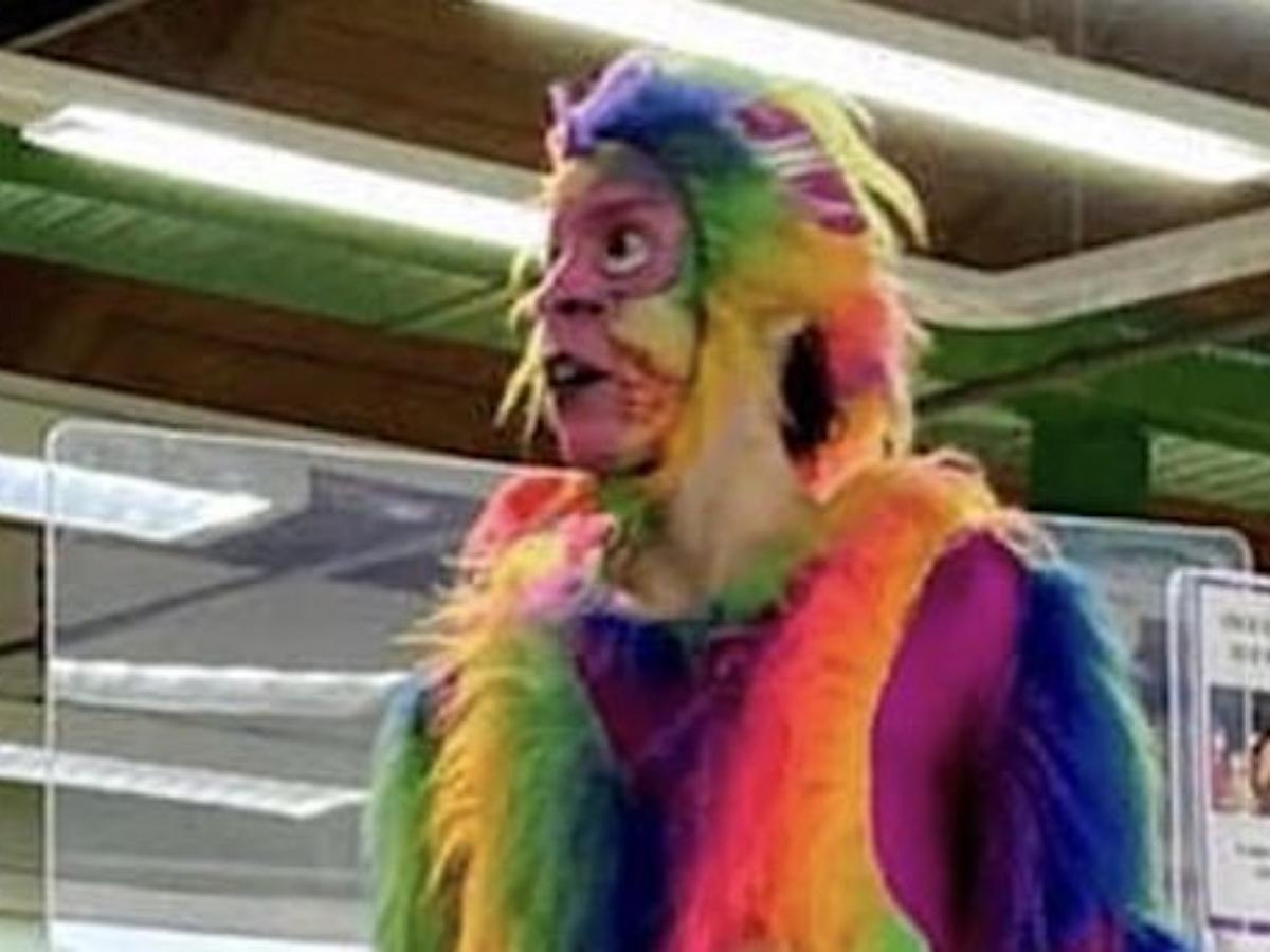 Аниматор в костюме радужной обезьяны переборщил с натурализмом на детском празднике