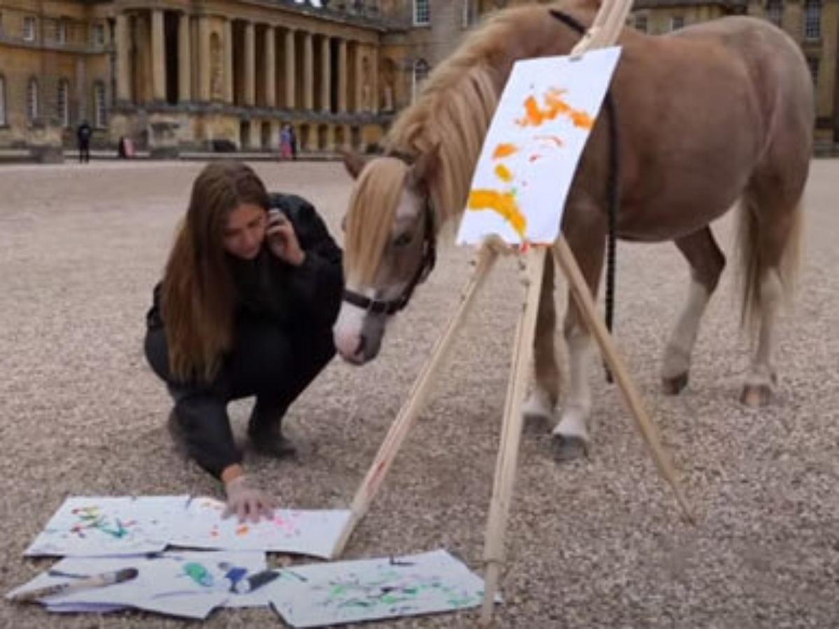 В Англии пони научился рисовать и даже пишет картины