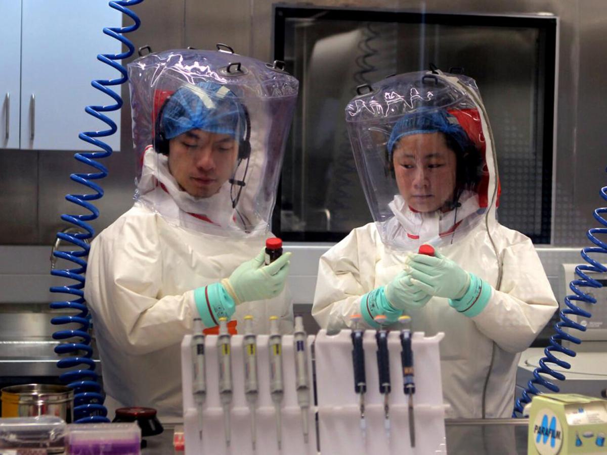 Лаборатория коронавирус