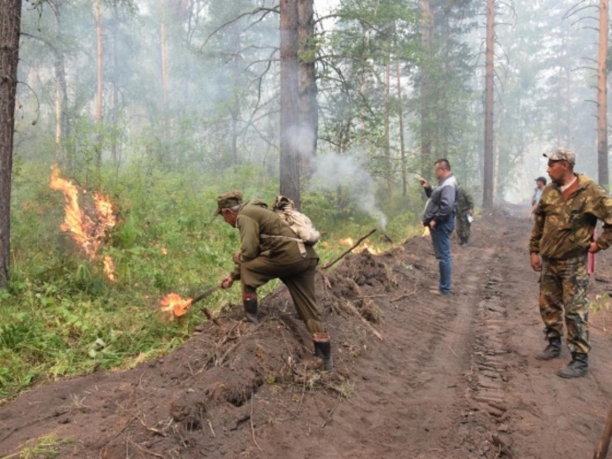 Жители Башкирии вышли на борьбу с пожарами, вооружившись ветками и домашними ковриками