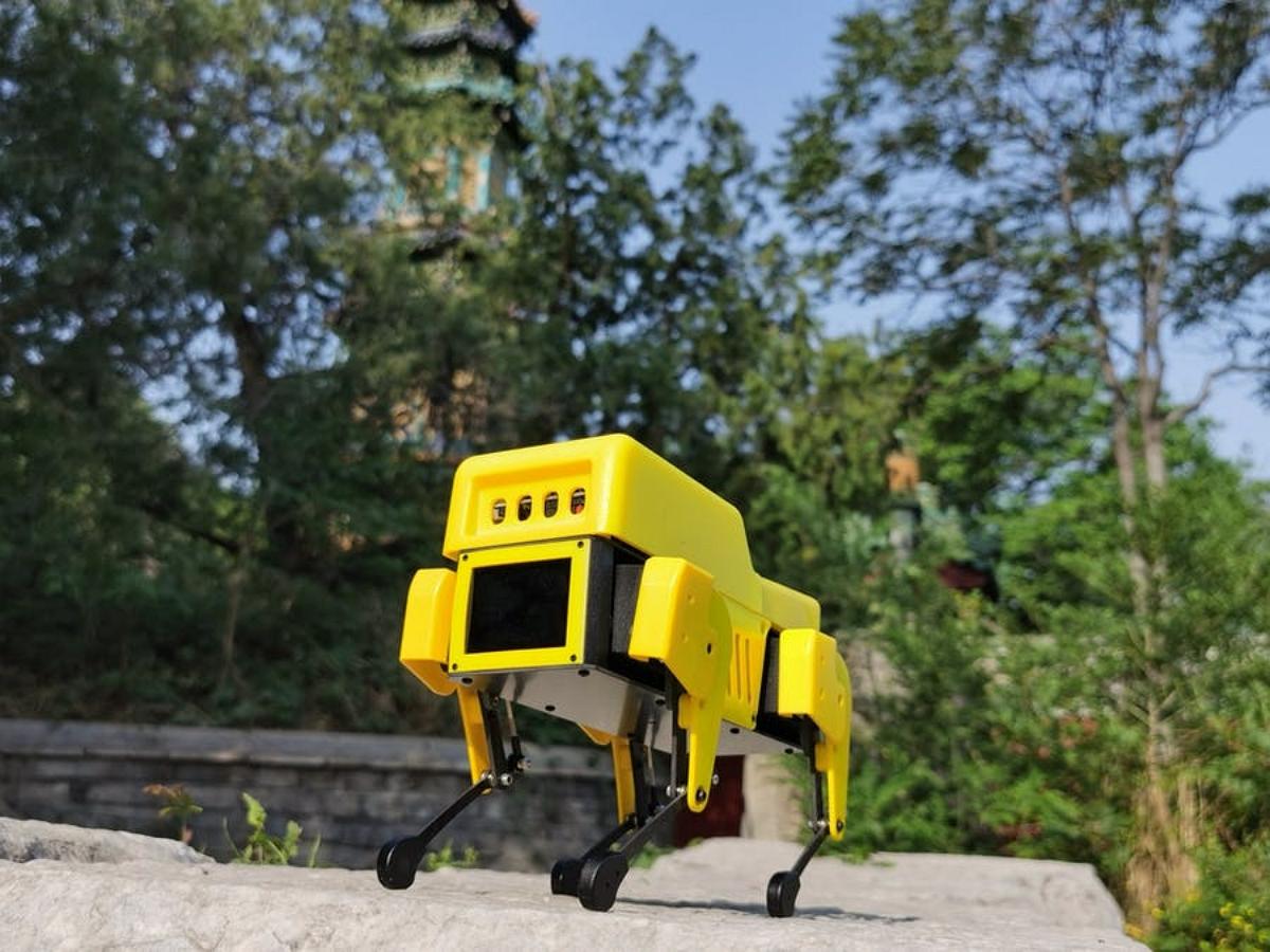 Мини-версия робота-пса вышла по вполне доступной цене
