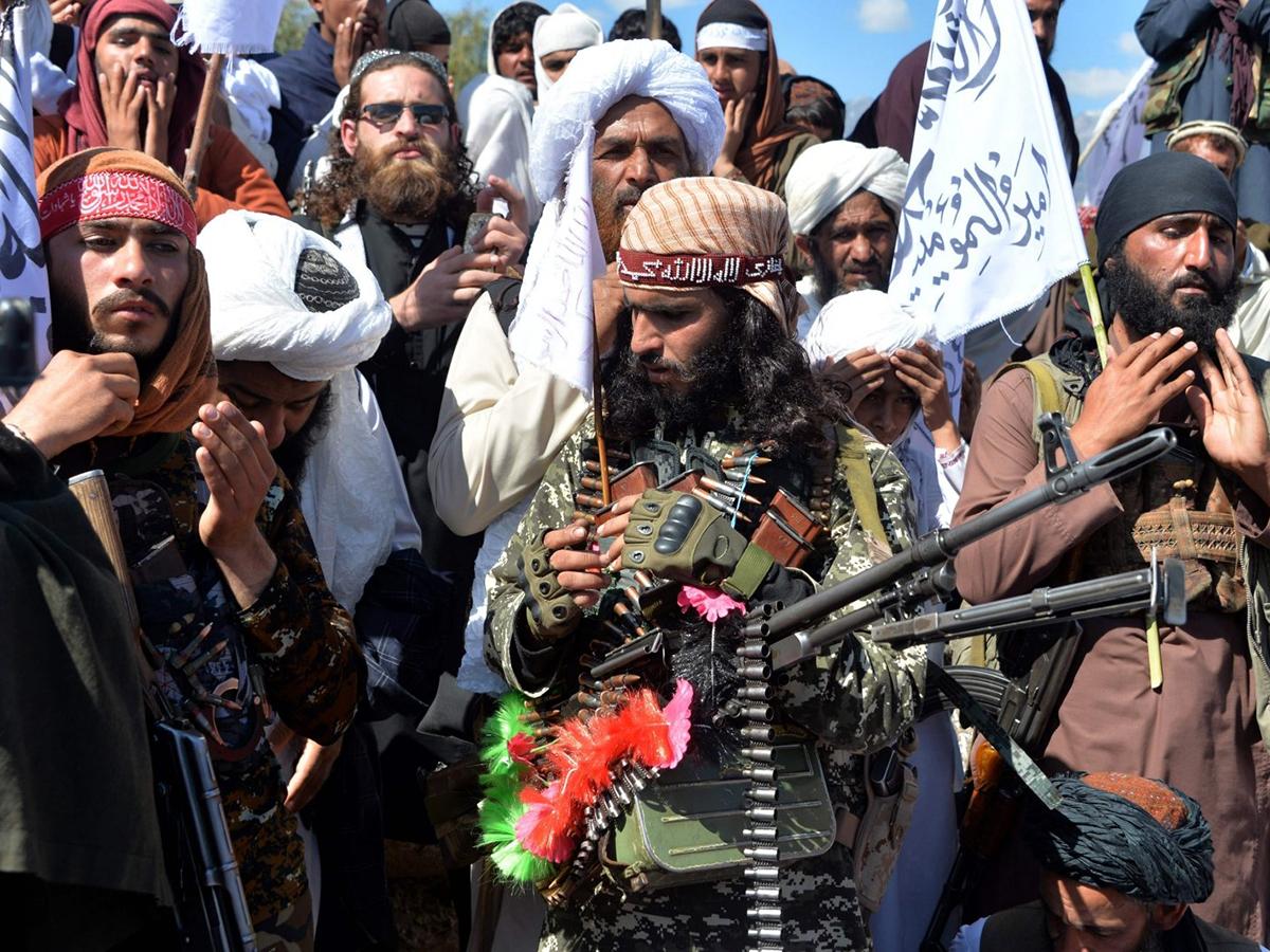 Талибан Аль-Каида