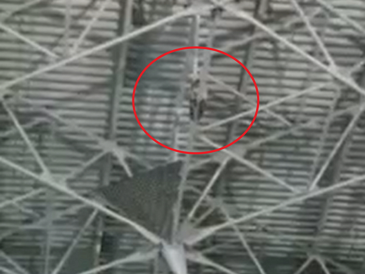 Пьяный иностранец залез под крышу аэропорта Внуково, угрожая покончить с собой