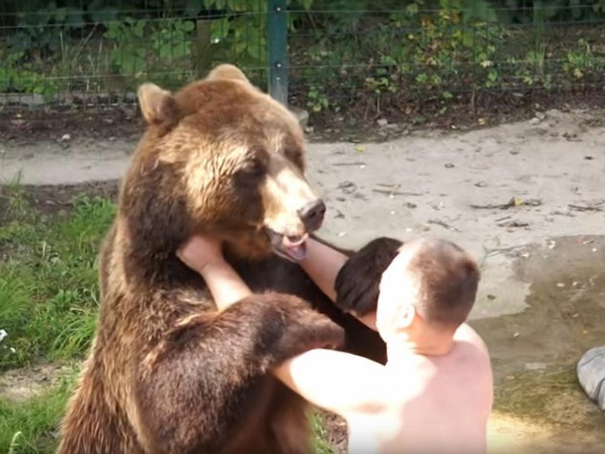 Борьба медведя со своим хозяином впечатлила пользователей