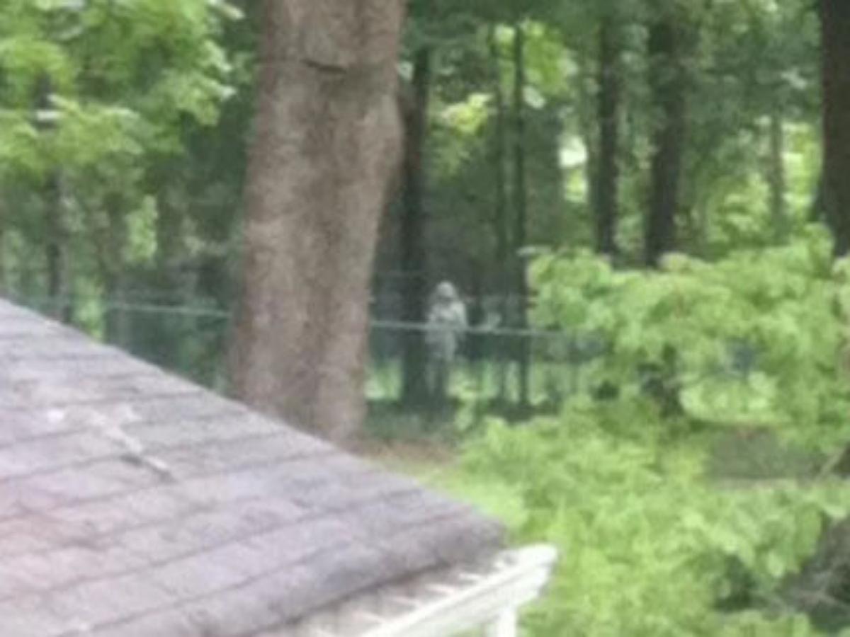 Фотограф запечатлел привидение у дома, выставленном на продажу