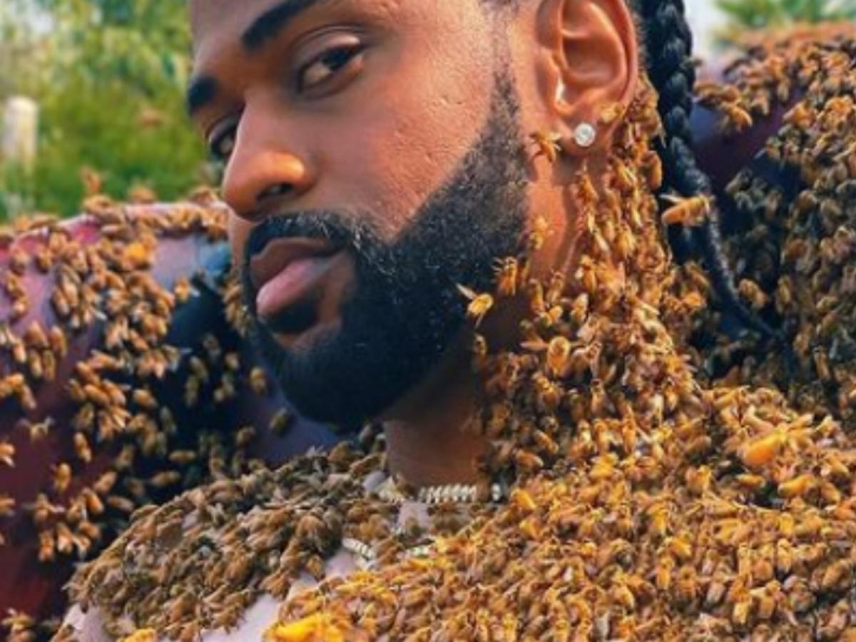 Биг Шон снялся в клипе, облепленный пчелами
