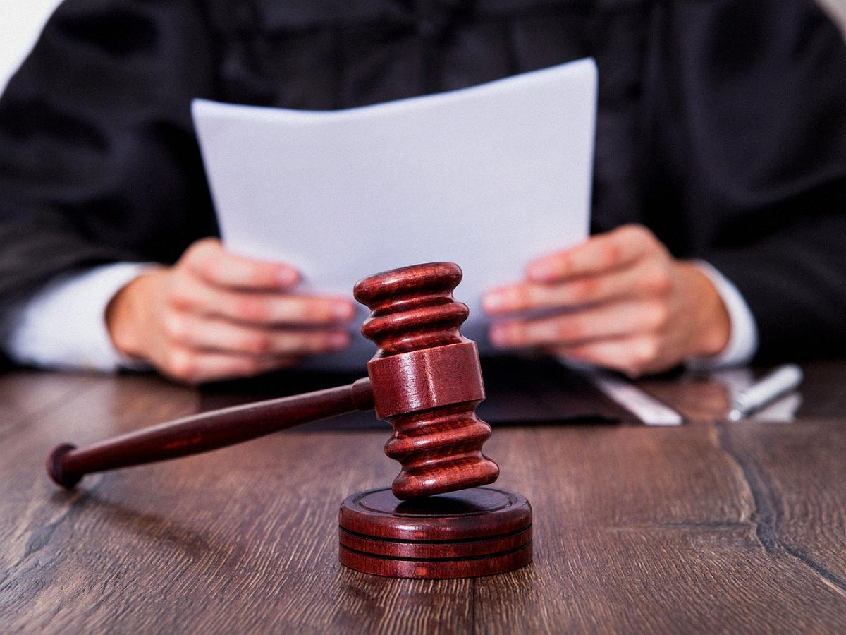 Подельники Раковой по делу о мошенничестве в суде расплакались и встали на колени