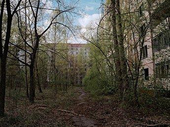 Эксперт рассказал, почему Чернобыль стал